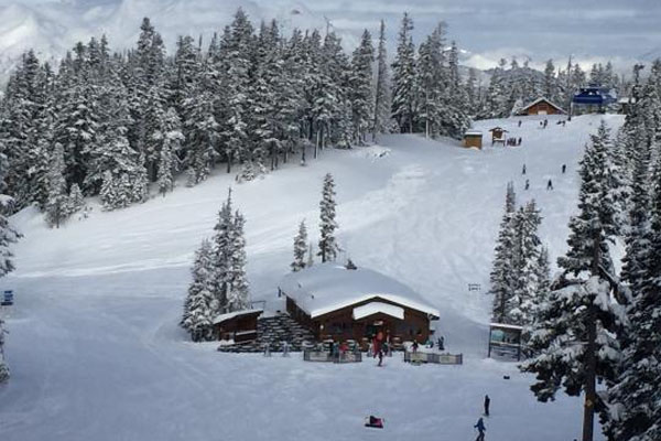 Whistler Mountain Restaurants