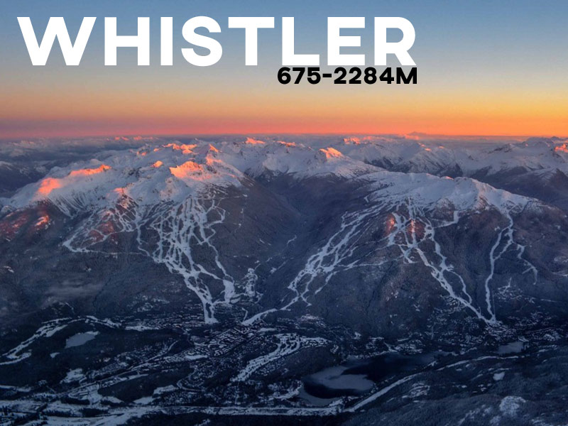 Whistler - Powder White