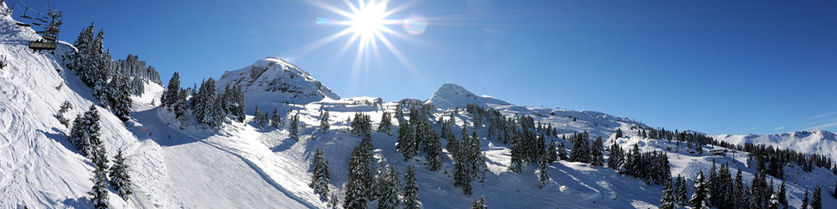 chatel-rs-banner