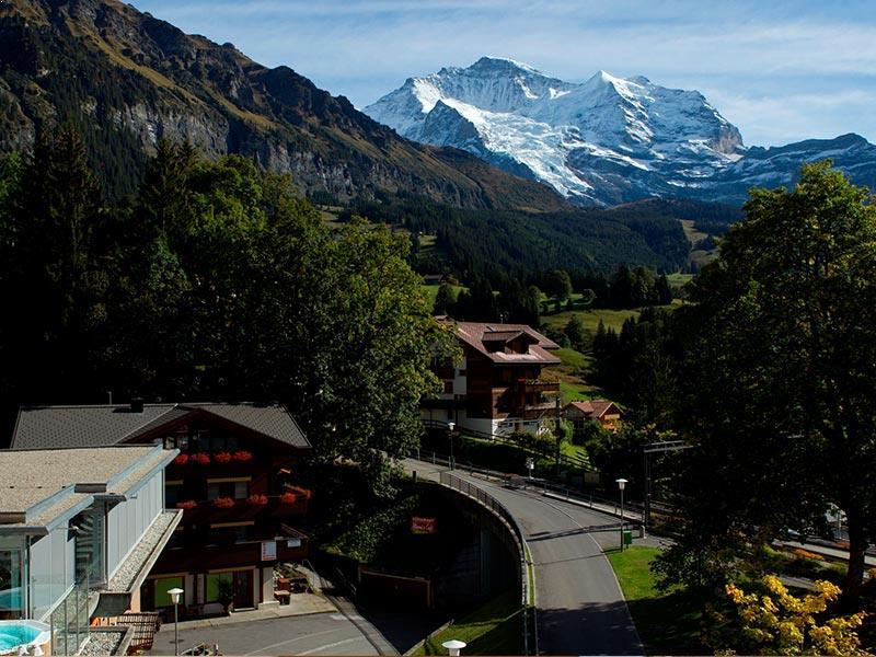 Single room Jungfrau view
