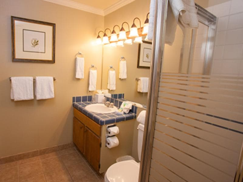 2 Bedroom Suite Deluxe Bathroom