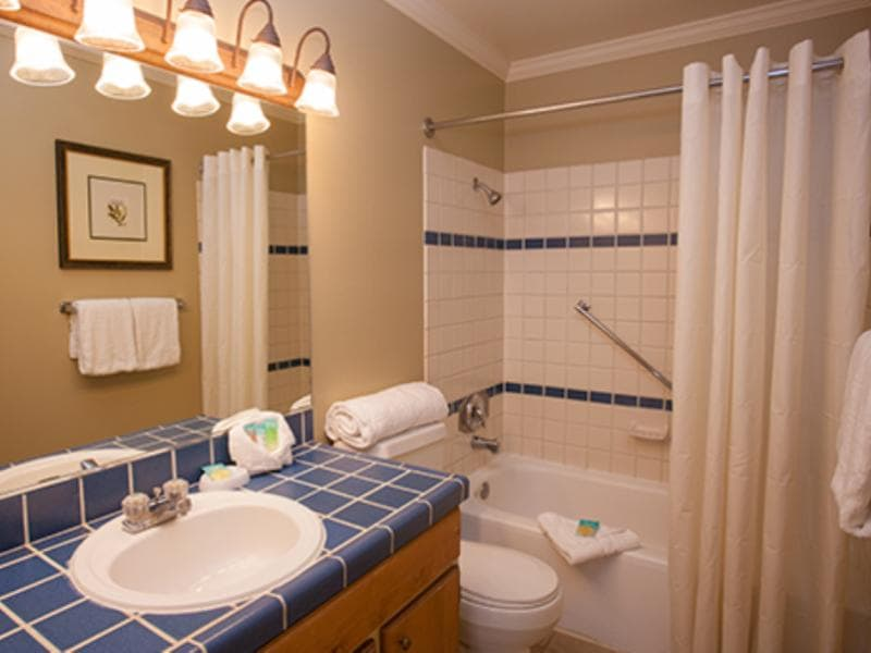 1 Bedroom Suite Deluxe Bathroom